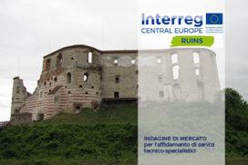 Ruins - indagine di mercato